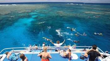Great Barrier Reef Snorkelling Cruise