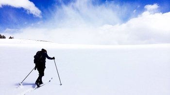 Private Guided Yellowstone Cross-Country Ski Tour