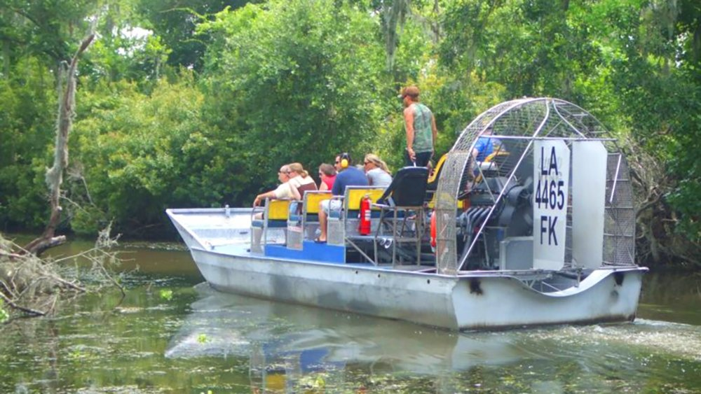 Swamp Tour New Orleans >> New Orleans Nature Tours Nature Reserves In New Orleans