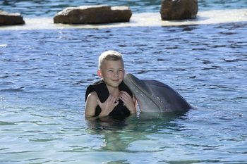 Dolphin Water Experience