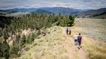 Private Full-Day Yellowstone Hiking Tour with Naturalist Guide Tour