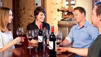 d'Arenberg Dead Arm Shiraz Masterclass with Wine & Cheese Tasting Plate