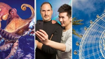 3-Attraction Pass:SEA LIFE,Madame Tussauds and ICON Orlando