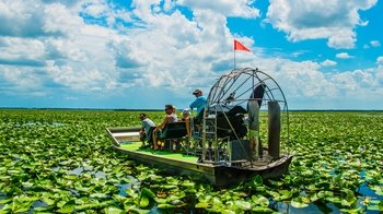 Guided Airboat Adventure on Lake Tohopekaliga