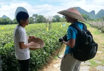 Private Daxu Old Town & Yaoshan Tea Plantation Tour with Lunch