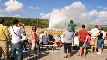 Guided Yellowstone Sightseeing & Photography Tour with Breakfast