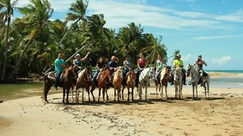 Guided Horseback Ride to Luquillo Beach