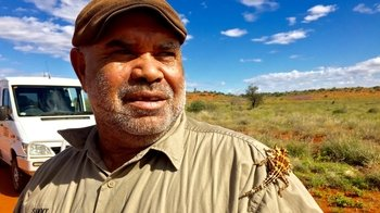 Patji Bushland Tour with an Aboriginal Guide