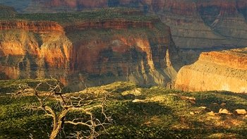 Small-Group Guided Tour to Marble Viewpoint in Grand Canyon National Park