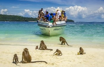 Early Riser Phi Phi Island with Maya Bay Snorkelling Tour