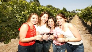 Full-Day Santiago City & Concha y Toro Tour