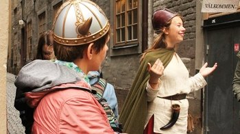 Private Viking History Walking Tour of Stockholm's Old Town