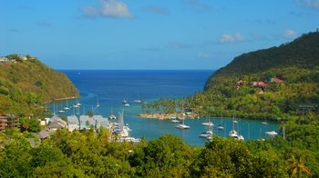 Half-Day Castries Market & St. Lucia Distillers Tour with Rum Tasting