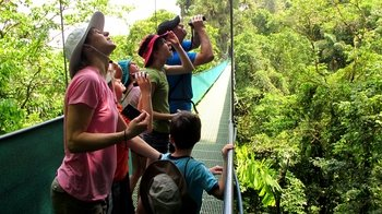 Full-Day Tour of Arenal Hanging Bridges, Eco Farm & Hot Springs
