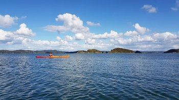 Bay of Islands Half-Day Kayaking Tour