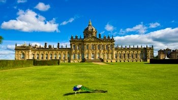Full-Day Tour of North Yorkshire Moors with Castle Howard from York