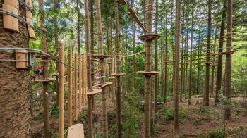 Admission to TreeTops Sydney - The Hills Adventure Park