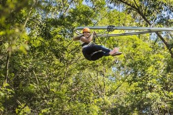 Central Coast TreeTop Crazy Rider Experience