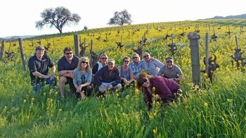 Small-Group Guided Winery Tour of Sonoma Valley