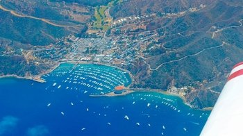 Things To Do In Catalina Island 2017 Top Attractions Amp Activities  Expedia