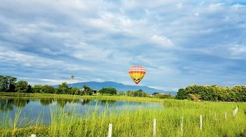 Chiang Mai Hot Air Balloon Ride with Breakfast & Sparkling Wine