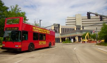 Guided Double-Decker Bus Tour