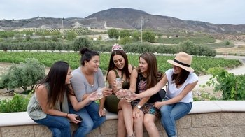 Wine Tour of the Temecula Valley