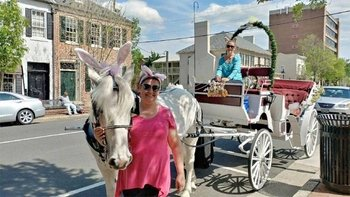 Private Guided Carriage Ride Through Fredericksburg