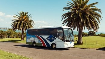 Full-Day City Bus Tour with Waitemata Harbour Cruise & Sky Tower Admission