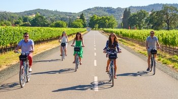 Sonoma Bike Tour with Cheese Factory Visit & Lunch