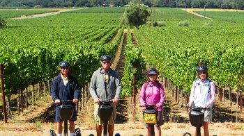Segway Winery Tour with Cheese Factory Visit & Picnic Lunch