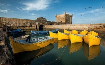 Full-Day Small-Group Tour of Essaouira