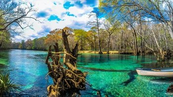 Cypress Spring Eco-Adventure