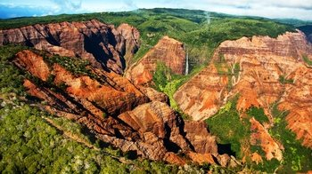 Waimea Canyon & Fern Grotto Tour