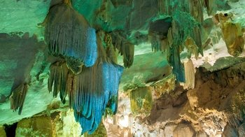 Full-Day Sightseeing Tour into Phong Nha Cave