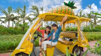 Sightseeing Bus Tour with Okinawa Churaumi Aquarium & Nago Pineapple Park