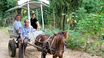 Private Nha Trang Countryside Tour & Horse-Drawn Carriage Ride with Lunch