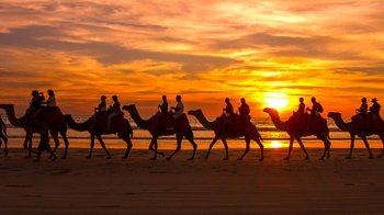 Broome Town Tour with Beer Tasting & Cable Beach Sunset