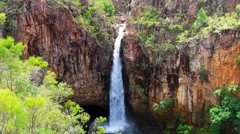 Full-Day Litchfield National Park Tour