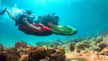 Beginner Scuba Diving Course