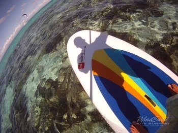Low Isles Stand-Up Paddle Island and Snorkel Tour