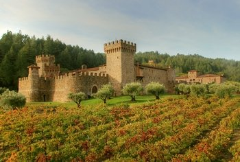 Small-Group Napa Wine Tour with Castello Di Amorosa & Lunch