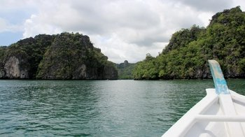 Mangrove River Cruise & Jungle Pool Swimming