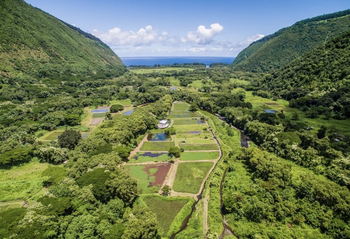3 Hour Waipio Valley ATV, Waterfall, and Cultural Experience