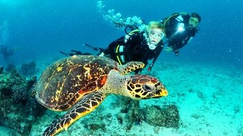 2-Day Scuba Course in Lanzarote with Open-Water Dive