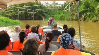 Full-Day Weston River Proboscis Monkey & Firefly Cruise with Buffet Dinner