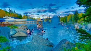 Day Trip to Chena Hot Springs Resort with Ice Museum & Lunch