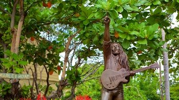 Private Guided Bob Marley Experience