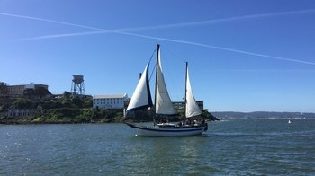 90-Minute San Francisco Bay Sailing Excursion with Drinks