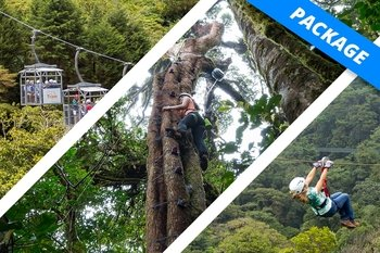 Natural Adrenaline Package with Ziplines, Tram & Tree Climbing